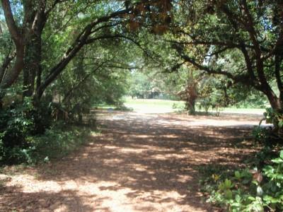 Ferry Park, Main course, Hole 9 Long tee pad