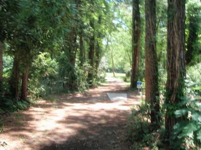 Ferry Park, Main course, Hole 12 Long tee pad
