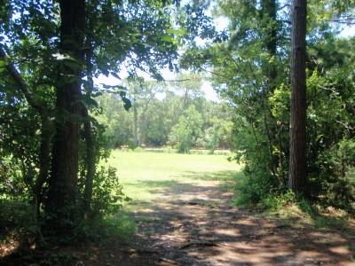 Ferry Park, Main course, Hole 16 Short tee pad