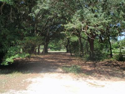 Ferry Park, Main course, Hole 8 Short tee pad