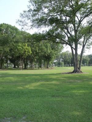 Youth Park, Main course, Hole 8 Tee pad
