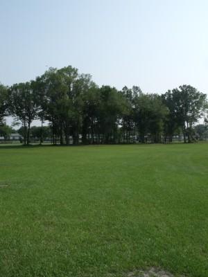 Youth Park, Main course, Hole 9 Tee pad