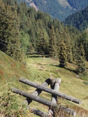 Schmitten Discgolf Parcours, Main course, Hole 2 Tee pad