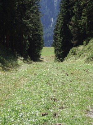 Schmitten Discgolf Parcours, Main course, Hole 9 Tee pad