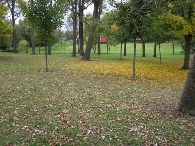 Hopedale Park, Main course, Hole 2 Tee pad