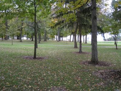 Hopedale Park, Main course, Hole 6 Tee pad