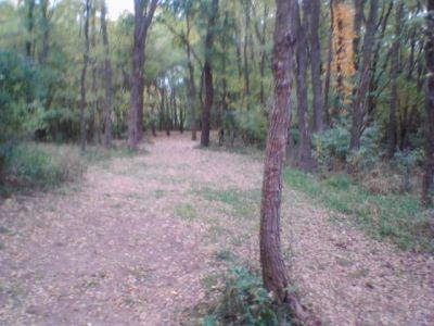 Sleepy Hollow State Park, Main course, Hole 6 Tee pad