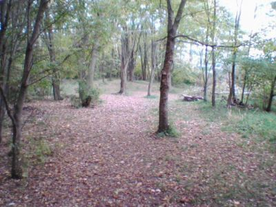 Sleepy Hollow State Park, Main course, Hole 5 Tee pad