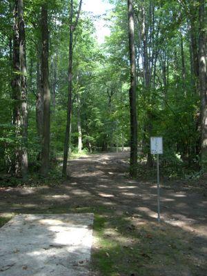 Sanford Lake Park, The Jungle, Hole 2 Tee pad