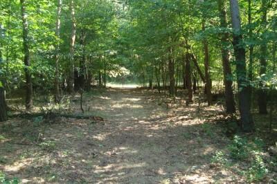 Shore Acres Park, Main course, Hole 17 Midrange approach