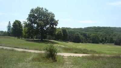 Shore Acres Park, Main course, Hole 13 Tee pad