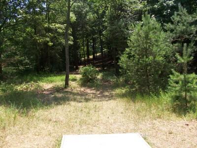 Shore Acres Park, Main course, Hole 6 Long tee pad