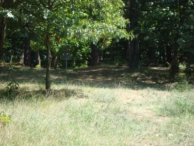 Shore Acres Park, Main course, Hole 9 Short approach