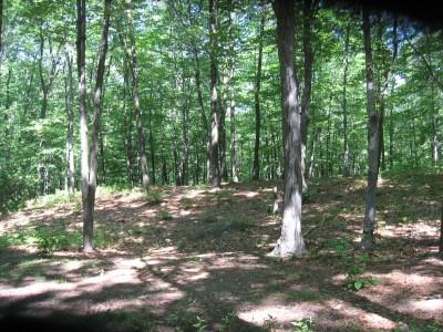 Page Park, Main course, Hole 3 Short approach
