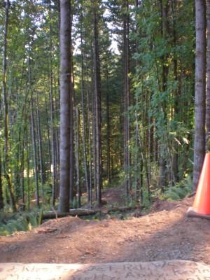 Horning's Hideout, Meadow Ridge, Hole 8 Tee pad