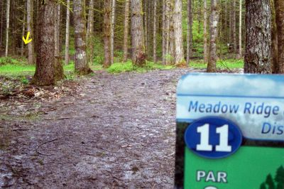 Horning's Hideout, Meadow Ridge, Hole 11 Tee pad