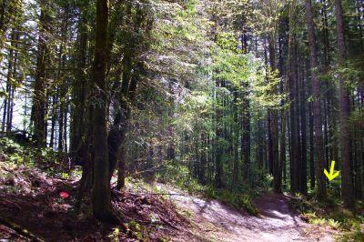 Horning's Hideout, Meadow Ridge, Hole 7 Long approach