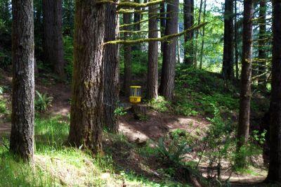 Horning's Hideout, Meadow Ridge, Hole 12 Midrange approach