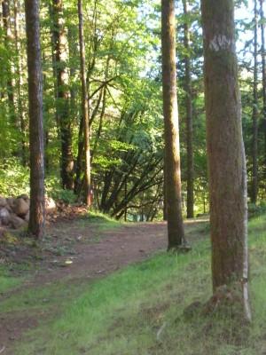 Horning's Hideout, Meadow Ridge, Hole 12 Short approach