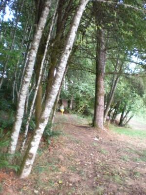 Horning's Hideout, Meadow Ridge, Hole 14 Short approach