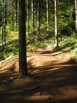 Horning's Hideout, Meadow Ridge, Hole 4 Short approach