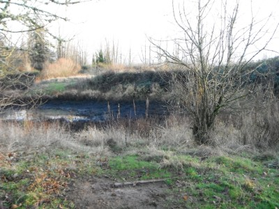 Keizer Rapids, Main course, Hole 12 Tee pad
