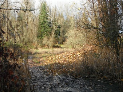 Keizer Rapids, Main course, Hole 1 Tee pad