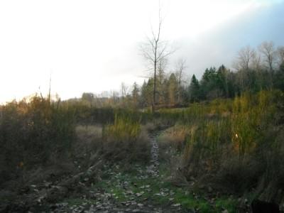 Keizer Rapids, Main course, Hole 14 Tee pad