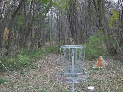 McCurdy Park, Main course, Hole 11 Putt