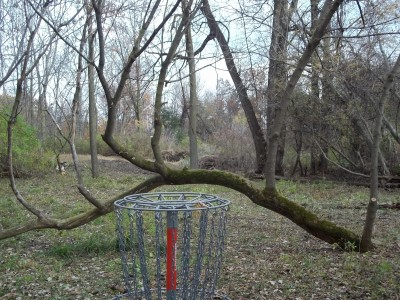 McCurdy Park, Main course, Hole 14 Reverse (back up the fairway)