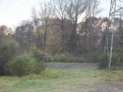 McCurdy Park, Main course, Hole 13 Midrange approach