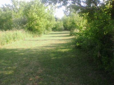 Reed Park, Main course, Hole 9 Tee pad