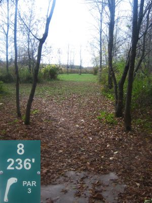 Reed Park, Main course, Hole 8 Tee pad