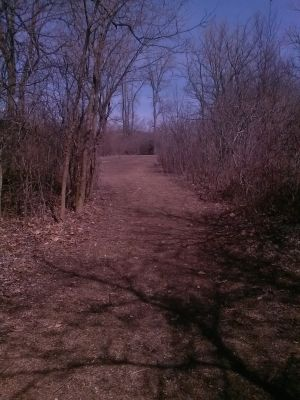 Reed Park, Main course, Hole 17 Tee pad