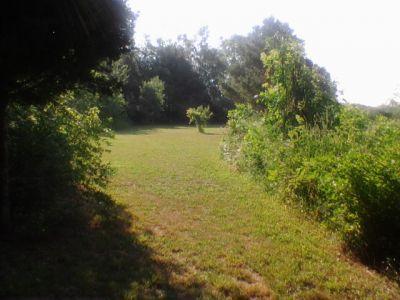 Reed Park, Main course, Hole 5 Tee pad