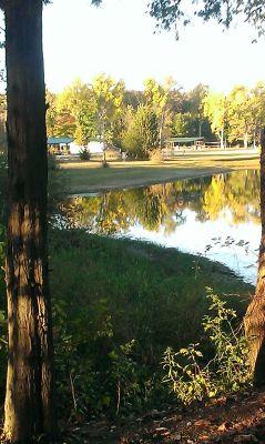Reed Park, Main course, Hole 18 Tee pad