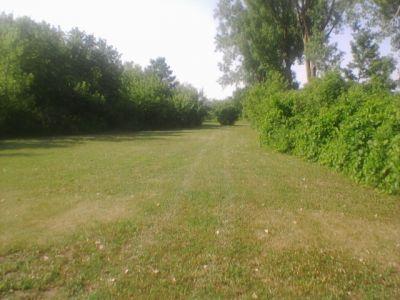 Reed Park, Main course, Hole 14 Tee pad