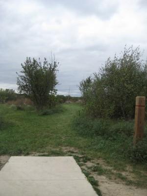 Mary Beth Doyle Park, Main course, Hole 11 Short tee pad