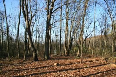 Mary Beth Doyle Park, Main course, Hole 7 Midrange approach