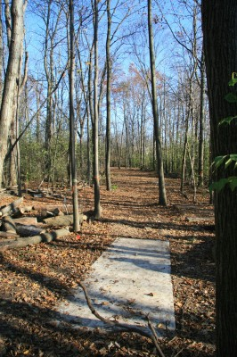 Mary Beth Doyle Park, Main course, Hole 6 Long tee pad