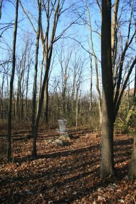 Mary Beth Doyle Park, Main course, Hole 7 Putt
