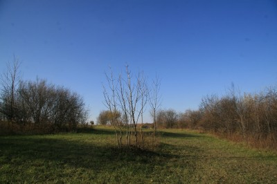 Mary Beth Doyle Park, Main course, Hole 9 Midrange approach