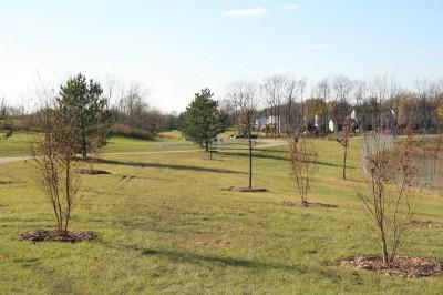 Mary Beth Doyle Park, Main course, Hole 1 Short approach