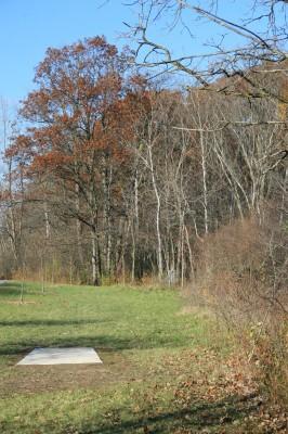 Mary Beth Doyle Park, Main course, Hole 8 Long approach