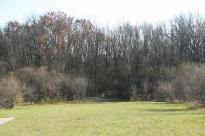 Mary Beth Doyle Park, Main course, Hole 4 Long approach