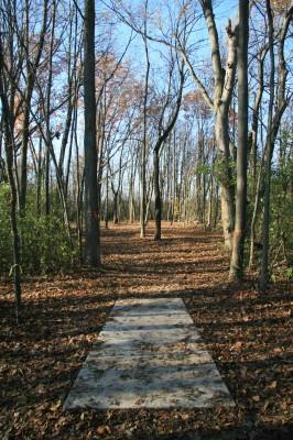 Mary Beth Doyle Park, Main course, Hole 7 Long tee pad