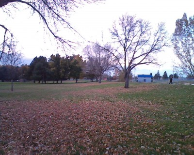Centennial Park, Main course, Hole 5 Tee pad