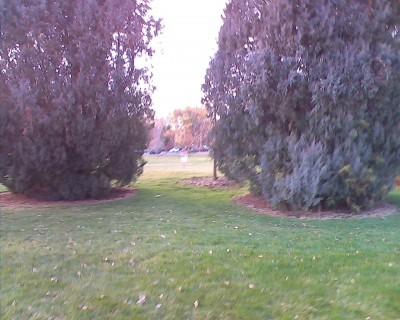 Centennial Park, Main course, Hole 9 Midrange approach
