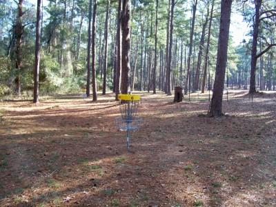 Joshua W. Franklin DGC, Main course, Hole 6 Putt