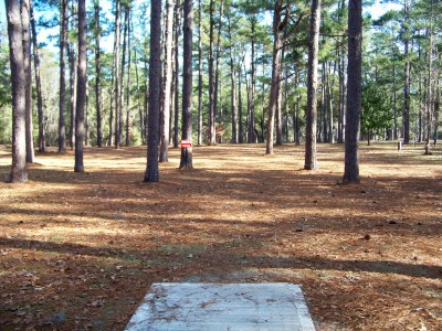 Joshua W. Franklin DGC, Main course, Hole 5 Tee pad
